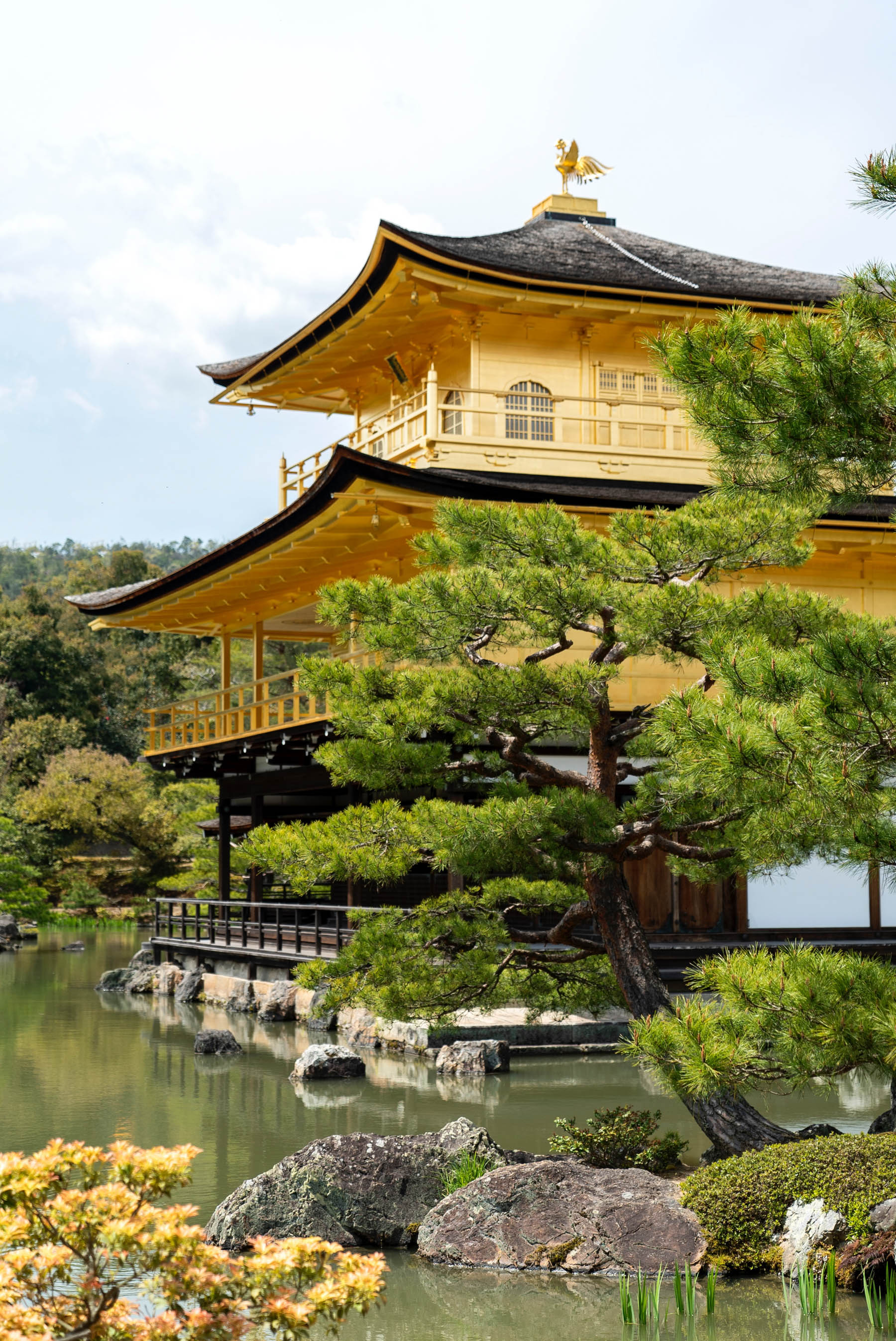 Offbeat Honeymoon Destination Kyoto Japan